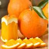 脐橙礼盒装  新鲜采摘水果产地