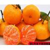 超甜雪杉小蜜橘子无籽鲜甜爆汁当季新鲜甜水果多规格包邮坏果包赔
